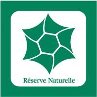 Balise de Reserve