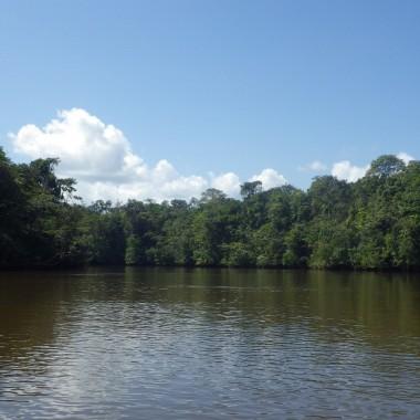 Criques et fleuves