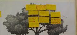 Des réunions de travail pour l'avenir du massif de Kaw